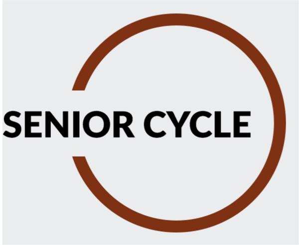 Senior Cycle